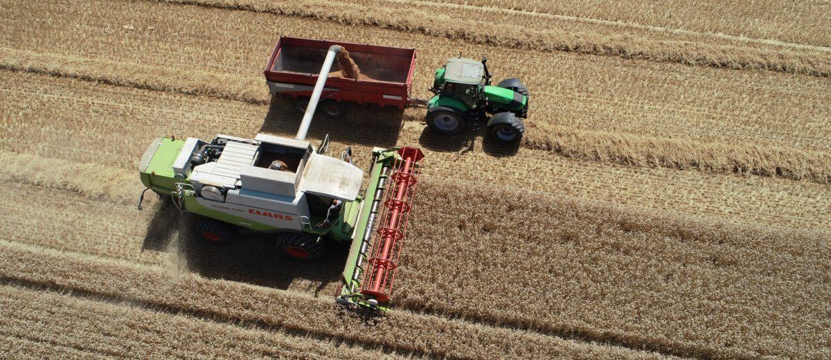Eureden - productions végétales, céréales