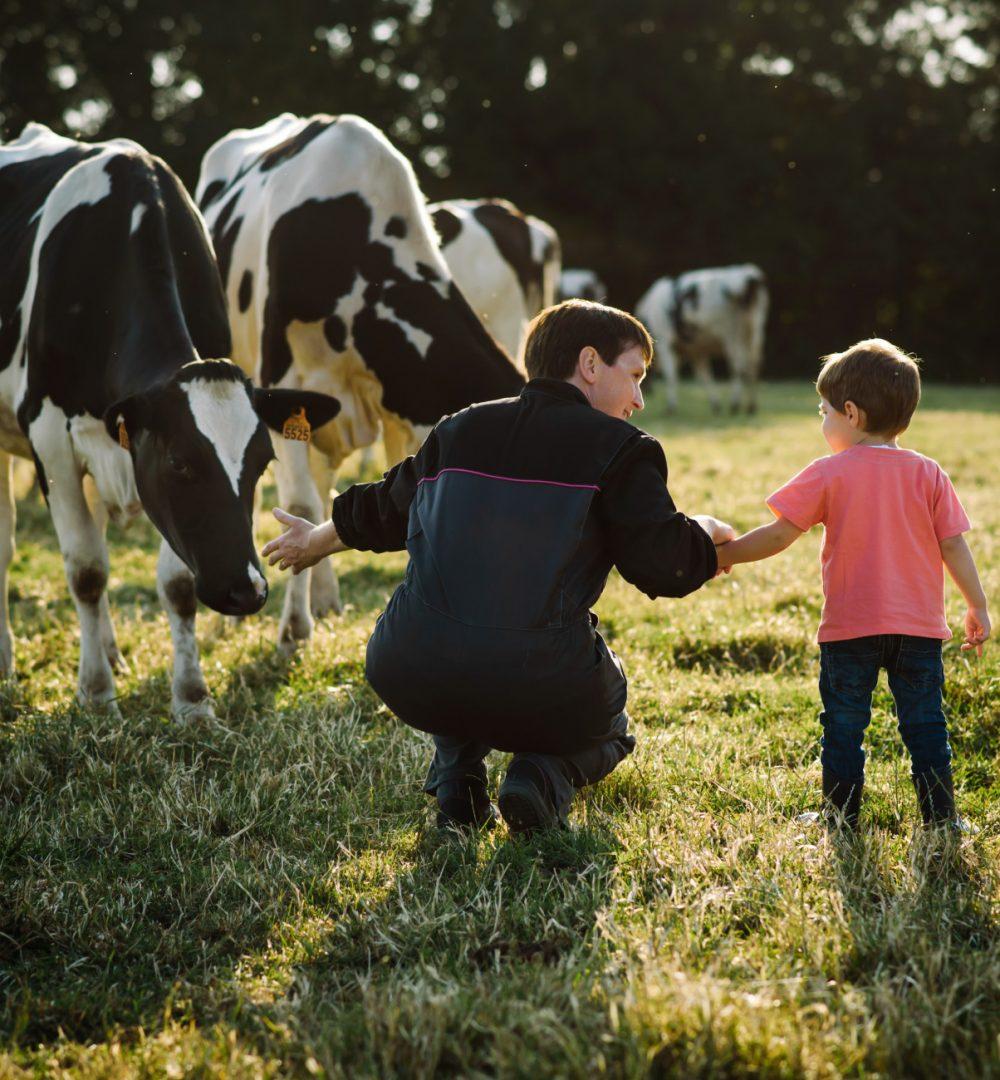 EUREDEN | Activités - Agriculture - Production de lait