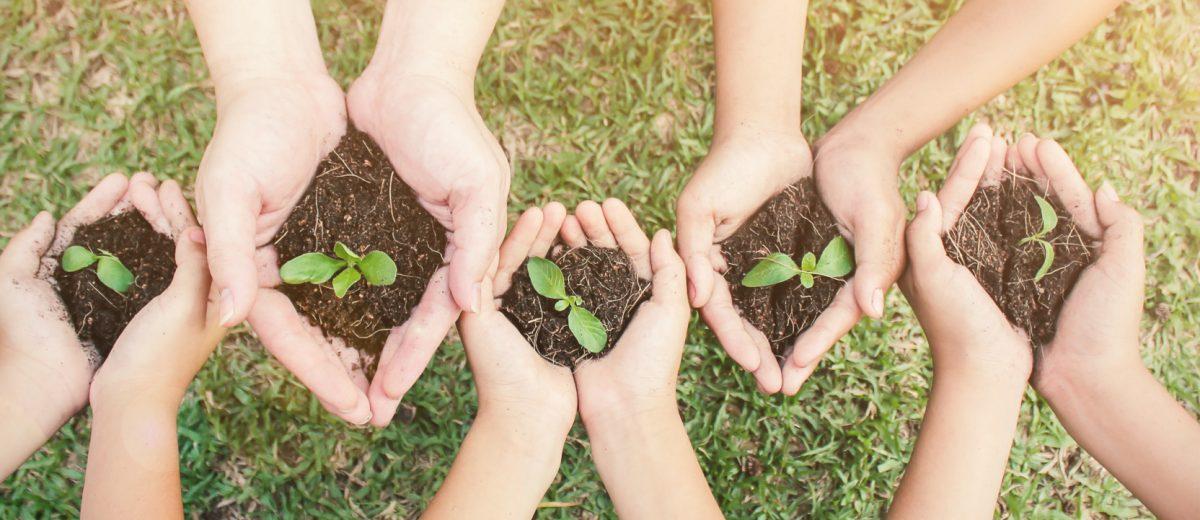 Responsabilité sociétale et engagements RSE
