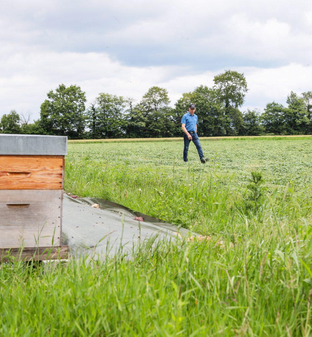 EUREDEN | Innovation agricole : agro-écologie et agronomie