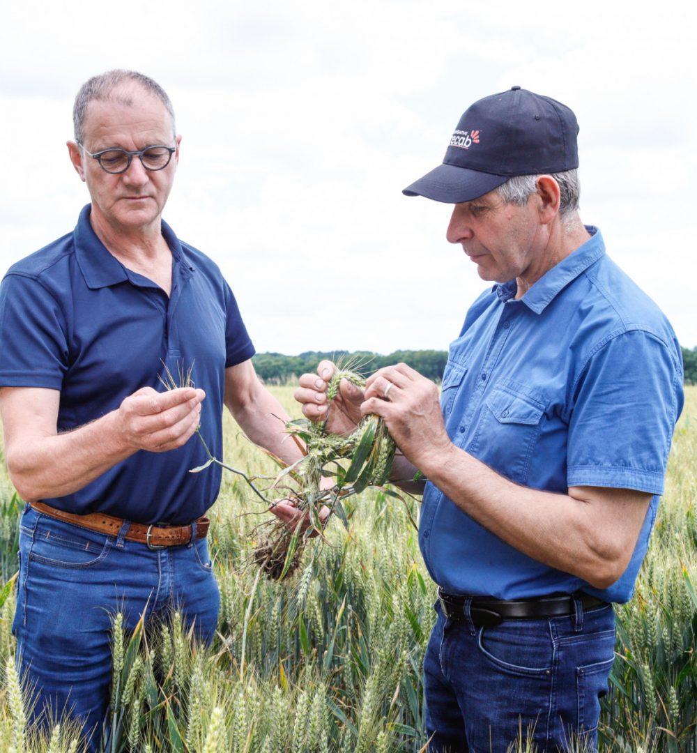 Eureden, agronomie et agrofournitures