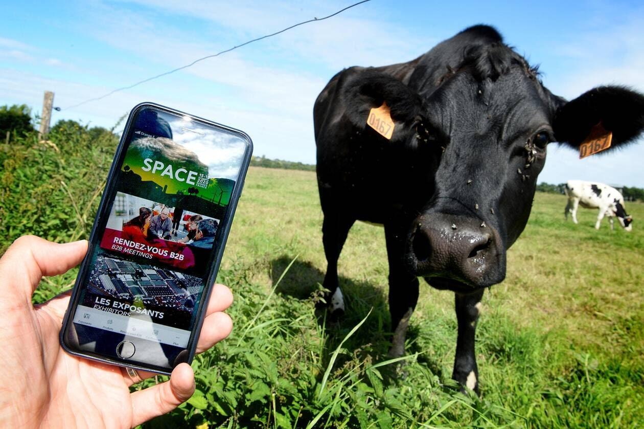 Eureden, partenaire du SPACE, Podcast la 'Voix de l'élevage'